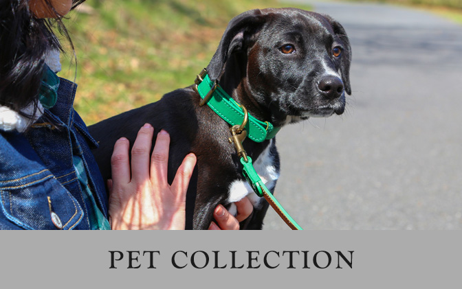 Leather Pet Collection